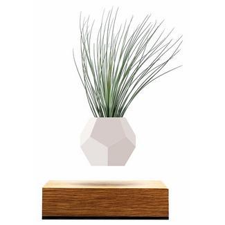 Vaso FLYTE Planter
