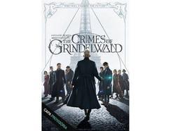 DVD Monstros Fantásticos : Os Crimes de Grindelwald (De: David Yates – 2018) (capa provisória)