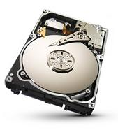 Seagate Constellation.2 1TB